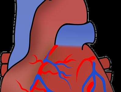 心筋梗塞の危険性を調べる心筋シンチグラフィ(心血流シンチグラフィ)の役割